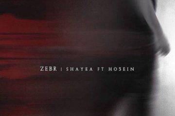 Zebr-Ho3ein-Shayea