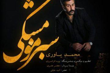 mohammad-yavari-sabze-moo-meshki-640