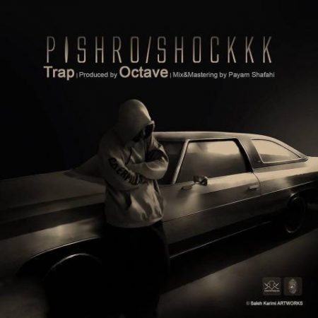 Reza Pishro-Shock