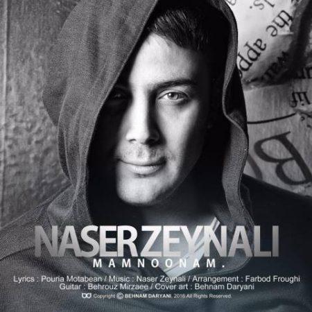 Naser Zeinali-Mamnonam